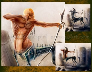 Centaur Muscle Anatomy