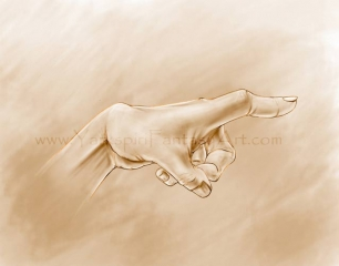 hand life drawing