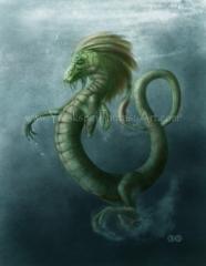 Water Dragon 001